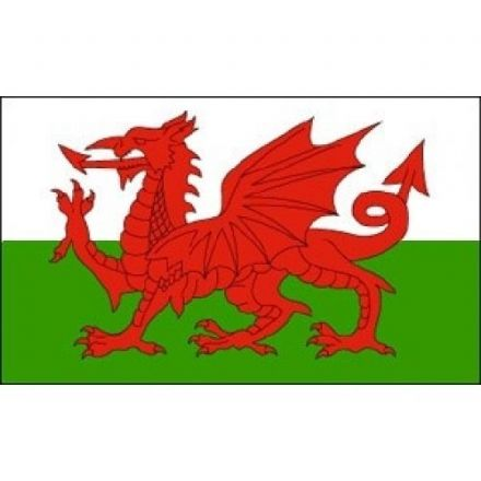 Welsh Flag, Approx. Size 5ft x 3ft